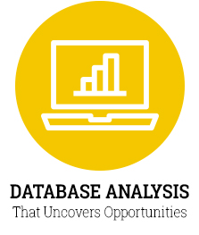 Database Analysis That Uncovers Opportunities
