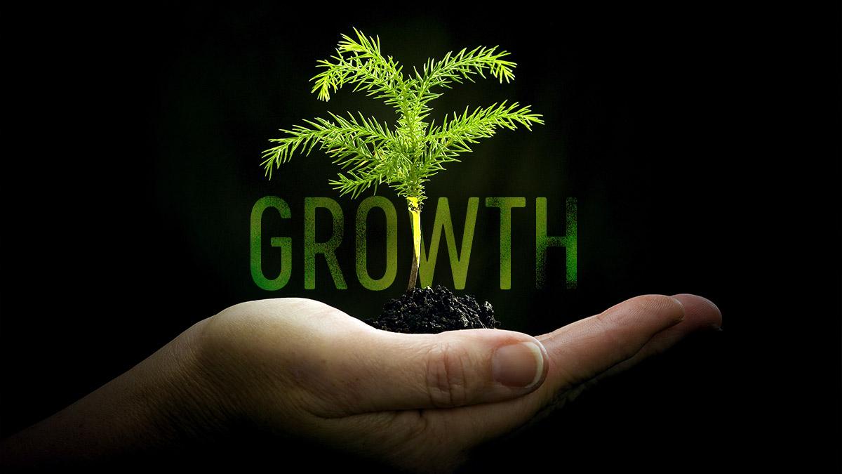 Grow Social Media Audience